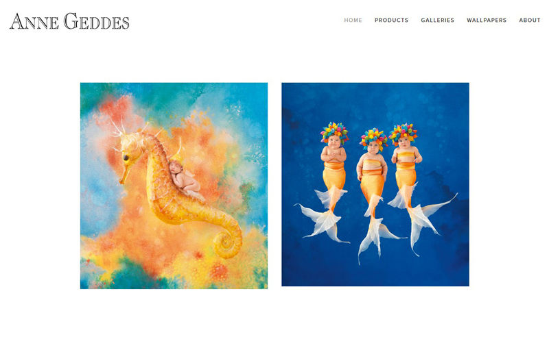 Best Photography Websites // Anne Geddes